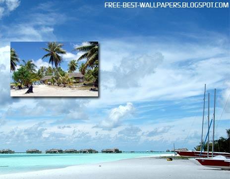 Widescreen Beach Wallpapers Download Free Best Windows XP VISTA